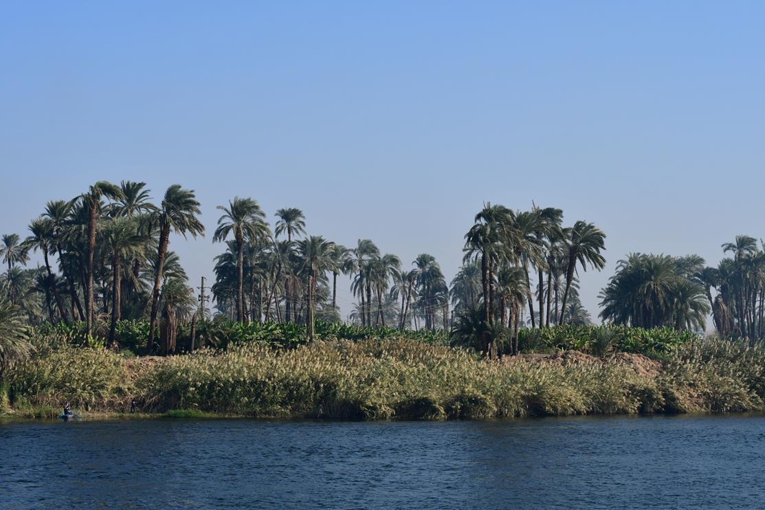 Dir Nil